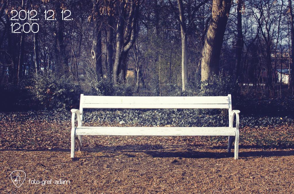 foto-graf-adam-2012-12-12-12-00