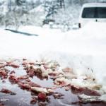foto graf adam - http://fotografadam.hu